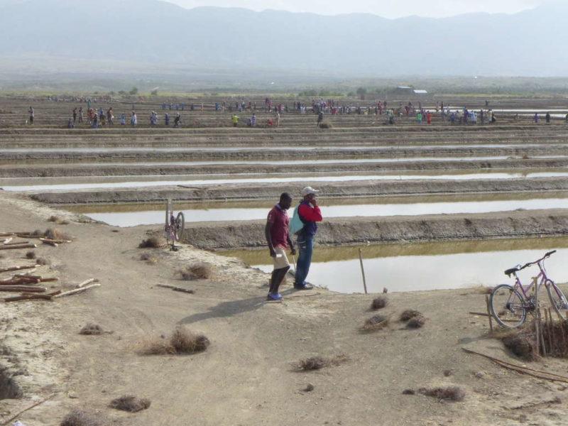 Mitarbeiter prüfen den Zustand der Saline in Haiti (Quelle: Erhard Stückrath)
