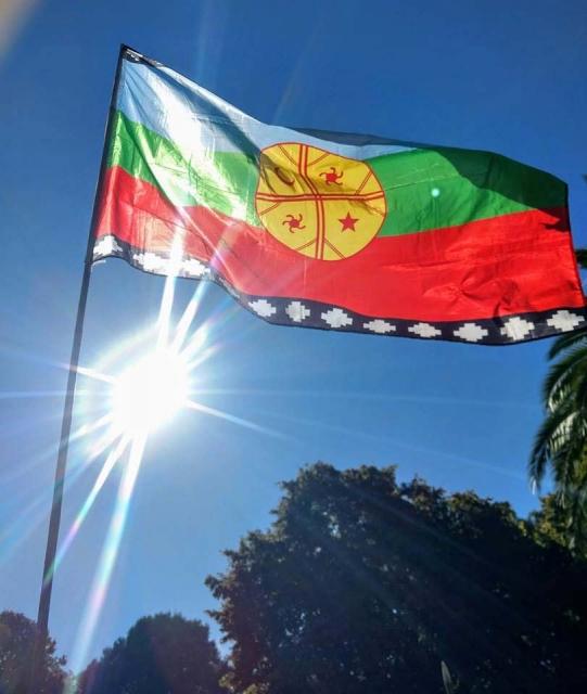 """Die """"Wenufoye"""", die Flagge der Mapuche. (Foto: Mapucheexpress)"""